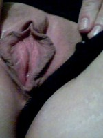 cougar pussy