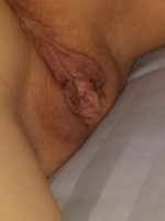 The wifes pussy